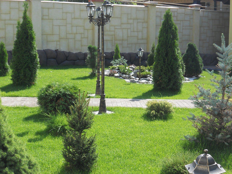 Рулонный газон в Саратове 3-4