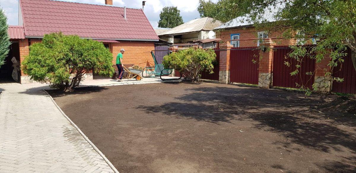 Рулонный газон в Саратове 1-1