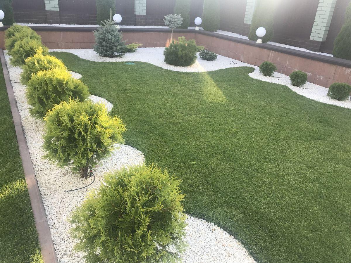 Рулонный газон в Саратове 2-1